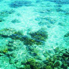 【グレードバリアリーフ、ケアンズ】世界最大の珊瑚礁は約2600kmもの範囲で広がり、宇宙からも確認できるほど広大です。Great Great Barrier Reef, Cairns.@his_japan | Webstagram - the best Instagram viewer