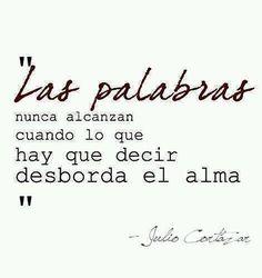 Las palabras nunca alcanzan cuando lo que hay que decir desborda el alma - Julio Cortazar
