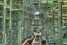 Alberto Kalach, de architect van de Bibliotheek Vasconcelos in Mexico-stad, was vastberaden een spectaculaire openbare ruimte te ontwerpen. Volgens hem zou de bibliotheek zo een groter publiek trekken.