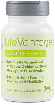 Canine Health is specifically formulated to reduce oxidative stress in our pets which will help support brain functions, joints, mobility & cognitive functions.