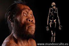 Homo naledi el misterioso homínido que puede reescribir la historia