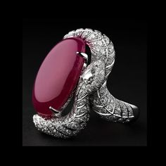 A Cartier ring; enclosed by a snake, a symbol of eternity.