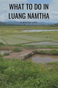 Heading to Laos from China? Here's what to do in Luang Namtha - A Walsh Life #travel #travelblog #laos #laostravel #luangnamtha