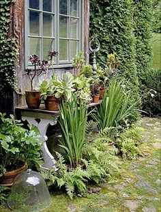 Like the bench filled w/potted plants. . . .  -  Linda Broughman via Ambrozijn en oude kant