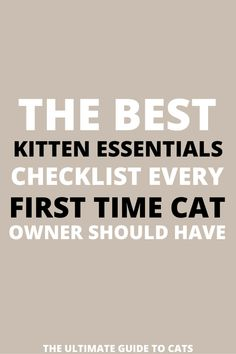 Wow! My daughter is getting a kitten for her birthday and this kitten essentials list has helped us so much. It makes me so excited to bring my baby kitten home!! #kittenessentials #kittenessentialslist #kittenessentialsproducts Funny Cat Faces, Funny Cat Photos, Funny Cats And Dogs, Funny Cat Videos, Cat Breeds List, Large Cat Breeds, Funny Cat Wallpaper, First Time Cat Owner, Getting A Kitten