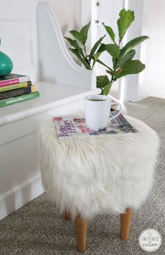 Fur poof, not normally my style, but I really like this.....only I think Buster would either try to hump it or pee on it.
