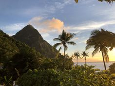Escape your 9 to 5 and find your peace at Sugar Beach, a beautiful luxury beach resort in St. Lucia, brought to you by Viceroy Hotels and Resorts. Luxury Beach Resorts, Hotels And Resorts, Pitons St Lucia, Places To Travel, Places To See, Turquoise Water, White Sand Beach, Tropical Paradise, World Heritage Sites