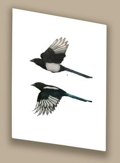 Increasing Magpies, Hazel Mountford
