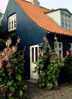 """"""" Old town house with flowers, Aarhus, Denmark photography by """" Denmark Travel Honeymoon Backpack Backpacking Vacation Europe Copenhagen Design, Copenhagen Travel, Copenhagen Denmark, Visit Denmark, Denmark Travel, Denmark Europe, Aarhus, Denmark House, Danish House"""