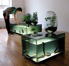 local river projekt glas aquarium rollen pflanzen erde