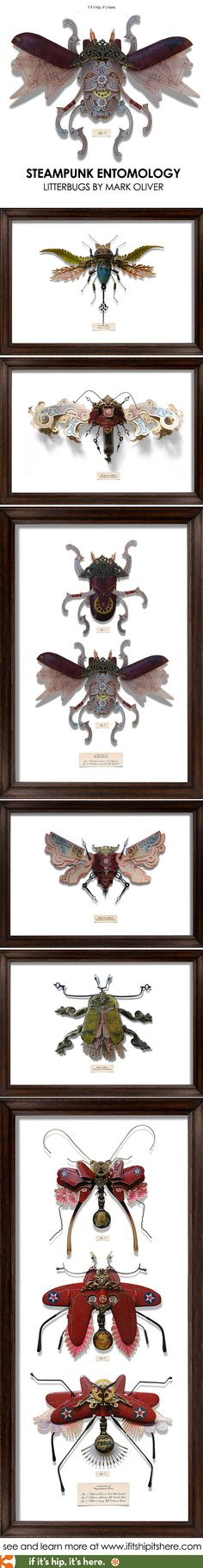 Beautiful sculptured insects made of paper and found objects. Litterbugs by Mark Oliver on if it's hip, it's here.
