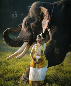 Once a traditional 💕 Elephant India, Asian Elephant, Elephant Love, Photography Ideas At Home, Couple Photography Poses, Dance Photography, Beautiful Nature Wallpaper, Beautiful Birds, Beautiful Pictures