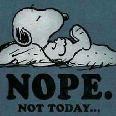 Snoopy Images, Snoopy Pictures, Funny Pictures, Charlie Brown Und Snoopy, Charlie Brown Quotes, Peanuts Cartoon, Peanuts Snoopy, Funny Quotes, Funny Memes
