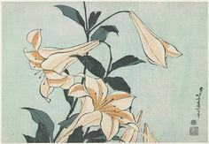 Katsushika Hokusai: Lilies - Minneapolis Institute of Arts