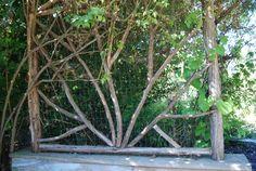 """Twig"" Arbor"