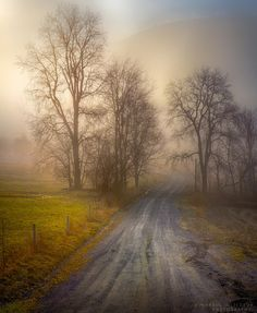 Nature,photography/ The Rural Road by Paul Jolicoeur on 500px