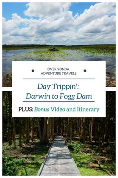 A mini adventure to Fogg Dam Conservation Reserve Darwin Australia, Visit Australia, Australia Travel, New Zealand Travel Guide, Great Vacations, Italy Vacation, Romantic Travel, Solo Travel, Japan Travel