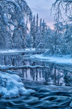 Gaia's Winter Garden: Polar night river by Jari Johnsson** Polar Night, Winter Magic, Winter Scenery, Snowy Day, Snow Scenes, Winter Beauty, Winter Pictures, Winter Landscape, Amazing Nature