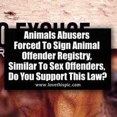 Hayley Sulley And Della Woods These Whores Are Animal Abusers - Animal abusers will finally registered just like happens sex offenders