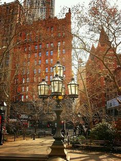 City Hall Park, New York.