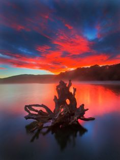 """500px / Photo """"Red Dawn"""" by Dylan Toh & Marianne Lim"""