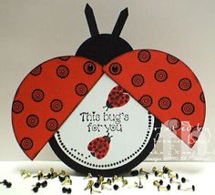 Cute Ladybug card - I made these 10 years ago, had my business card info in there.