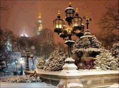 Winter and silent lights...