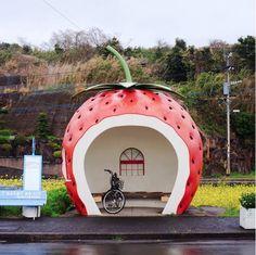 Kyushu, Japan.