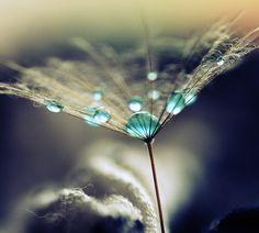 La vulnerabilità è quella forza che può darci una spinta in più e la volontà di rialzarci.