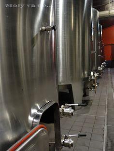 Su zona de fermentación  #ChâteauBataylley Commanderie de Madrid de los vinos de #Burdeos #Molyvade...#viaje #GranConseildesVinsdeBordeaux molyvade.blogspot.com