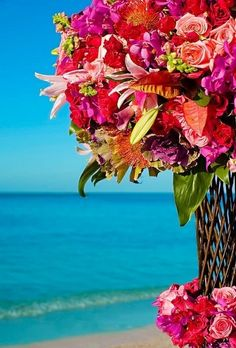 Tropical Beach and Flowers