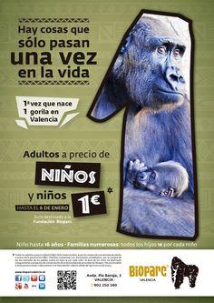 """""""Hay cosas que sólo pasan una vez en la vida"""" (www.bioparcvalencia.es)"""