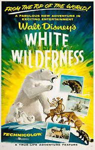 True Life Adventure: White Wilderness disney movie poster