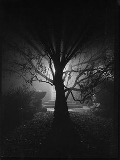 Josef Sudek, the poet of Prague