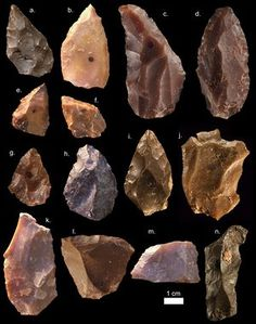 The tools found were based on a knapping technique called Levallois, adding to the realisation that the sophisticated way of shaping tools originated earlier than thought.
