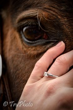 I love this horse's eye with the engagement ring