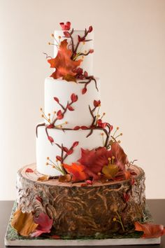 Beautiful fall themed cake covered with branches and leaves from Wild Orchid Baking Company. To see more fall themed wedding ideas: http://www.squidoo.com/autumn-wedding-planning