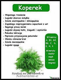 ABC o stolcu. Wypróżnianie jest końcowym wynikiem pob… na Stylowi. Herbs, Herb, Medicinal Plants