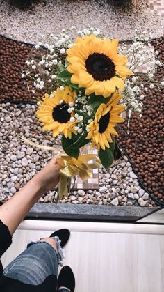 """Sunflowers 🌻 no Twitter: """"Why are sunflowers so pretty 😭😍🌻… """" ."""