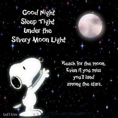 Good Night. Snoopy reach for noon land in Stars