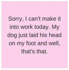hahahahah - so me! #DogPaw