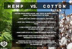 High on Environmentalism - Hemp v. Cotton | 21 + | Pinned by Www.Tetra9Consulting.com |