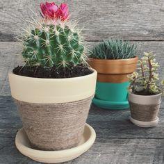 Pin it & Spin It: Twine Wrapped Flower Pots