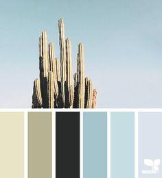 Cacti Color via @designseeds