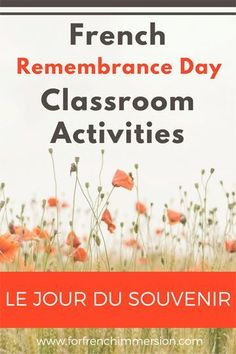 "Check out the list of FREE French Remembrance Day classroom activities + links to videos and craft ideas. Teach ""le Jour du souvenir"" in French. Remembrance Day Activities, Remembrance Day Art, French Teacher, Teaching French, French Lessons, Spanish Lessons, High School French, Core French, French Education"