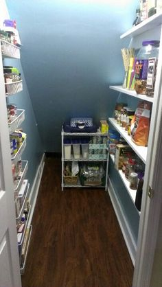 Closet under stairs pantry. Almost finished.