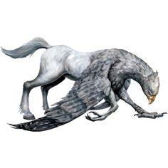 buckbeak tattoo - Google Search