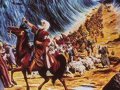 Crossing the Red Sea!