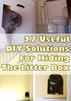 Our dogs like to eat the poo out of the litter box. half of these ideas would eliminate that. For Cat lovers- 27 Useful DIY Solutions For Hiding The Litter Box Crazy Cat Lady, Crazy Cats, Gatos Cats, Animal Projects, Diy Projects, Cat Furniture, Litter Box, Diy Stuffed Animals, Pet Care