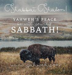 #shabbatshalom #sabbath #houseofyahweh #keepthesabbath #7thdaysabbath Shabbat Shalom, Sabbath, House, Home, Homes, Houses